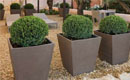 Rectangular Conic Planter